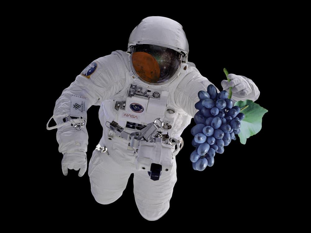 NASA-Studie: Rotwein stärkt Astronauten bei einer Mars-Mission
